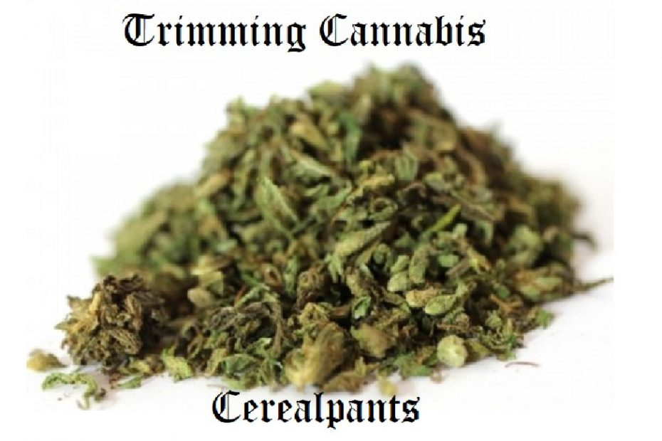 Complete Guide to Trimming Cannabis